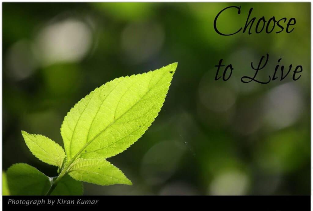 choose to live